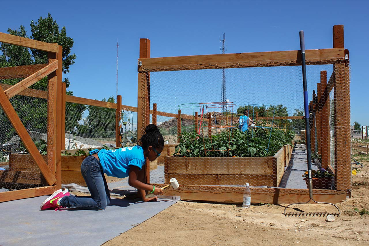 EDUCATIONAL-COMMUNITY-GARDEN-3