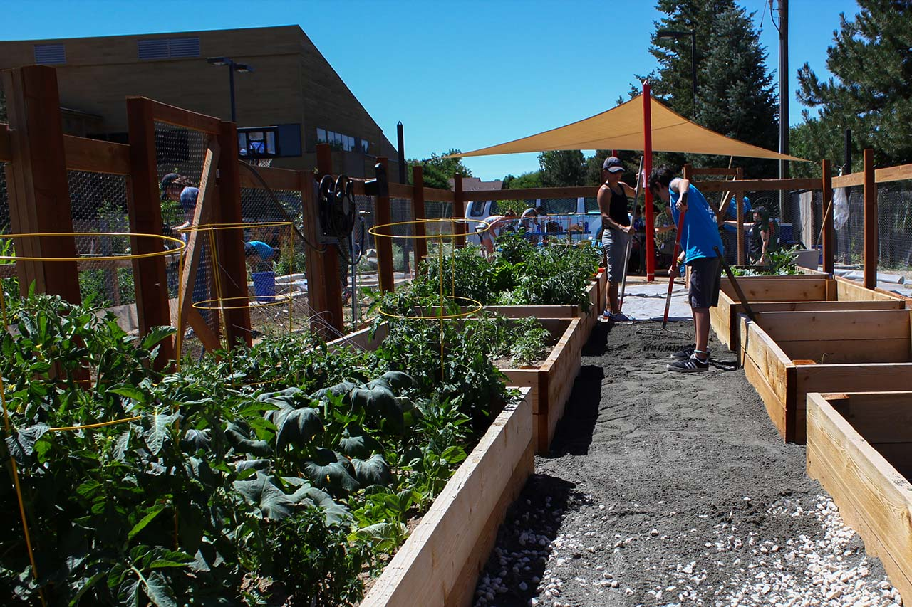 EDUCATIONAL-COMMUNITY-GARDEN-4