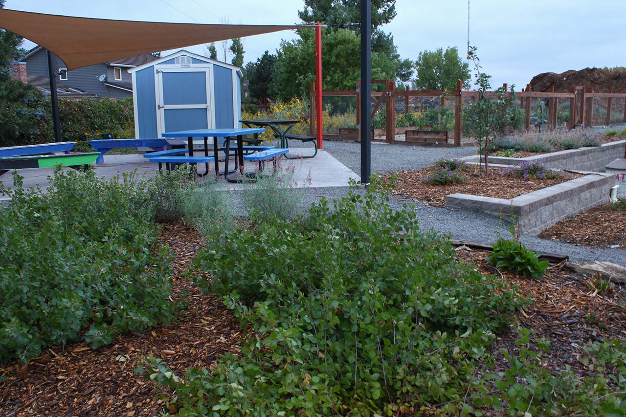 EDUCATIONAL-COMMUNITY-GARDEN-7