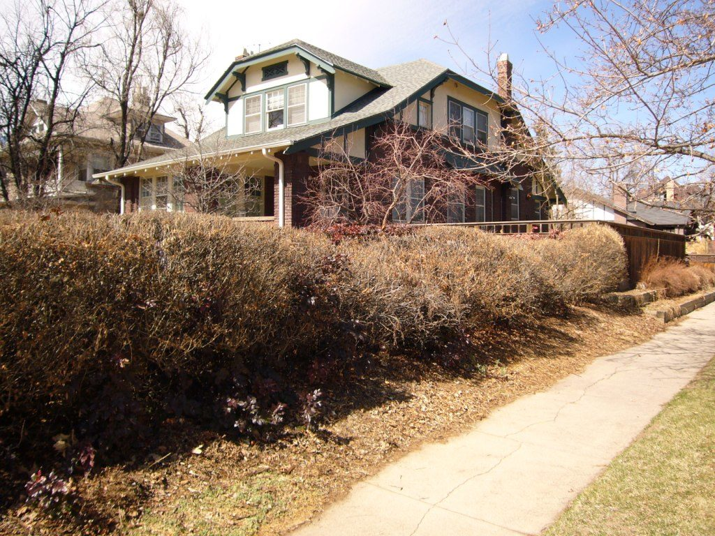 Creating Curb Appeal - Ivy Street Design